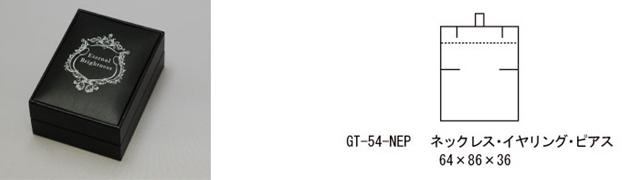 GT-54-NEP